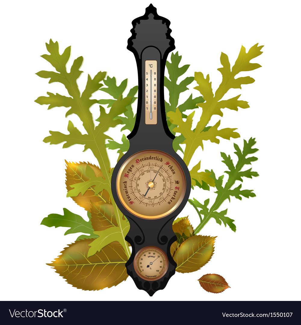 Barometer with leaves vector | Price: 1 Credit (USD $1)