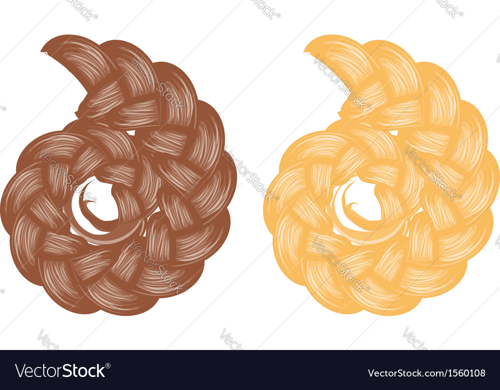 Braided bun vector | Price: 1 Credit (USD $1)