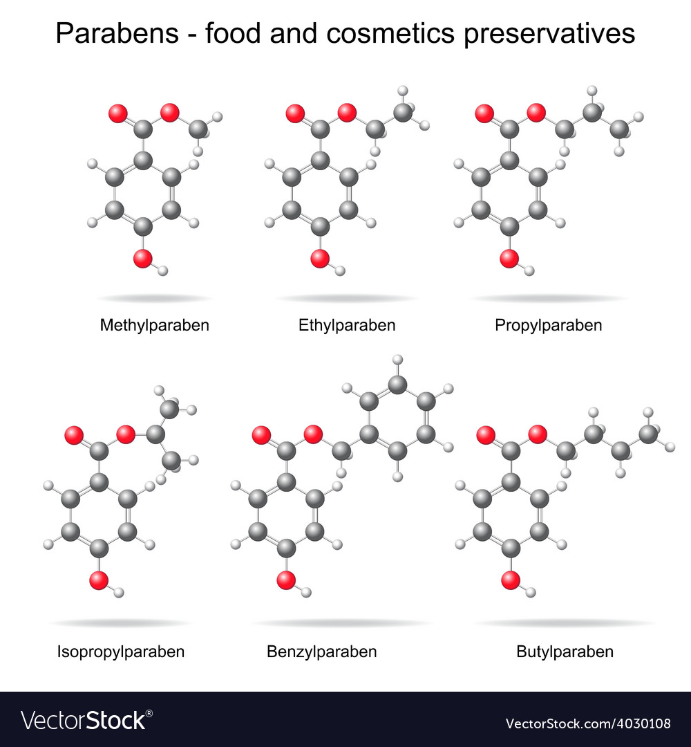 Parabens preservatives vector | Price: 1 Credit (USD $1)