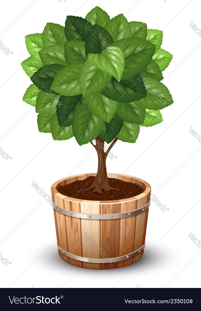 Tree tube vector | Price: 1 Credit (USD $1)