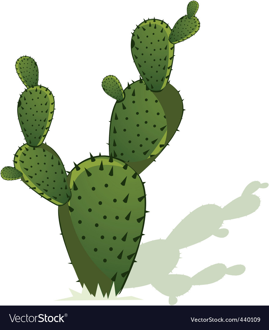 Cactus vector | Price: 1 Credit (USD $1)
