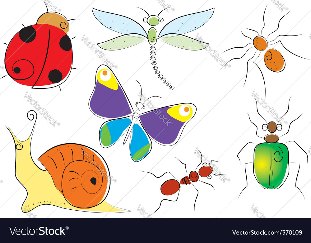 Insect collection vector | Price: 3 Credit (USD $3)
