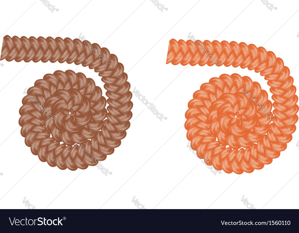 Braided flower vector | Price: 1 Credit (USD $1)