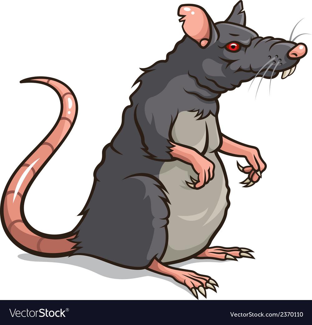 Rat vector | Price: 1 Credit (USD $1)