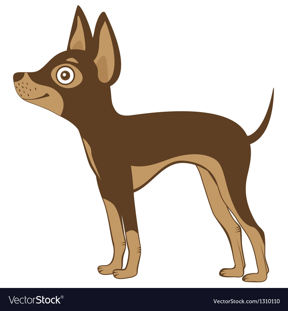 Russian toy terrier vector | Price: 3 Credit (USD $3)