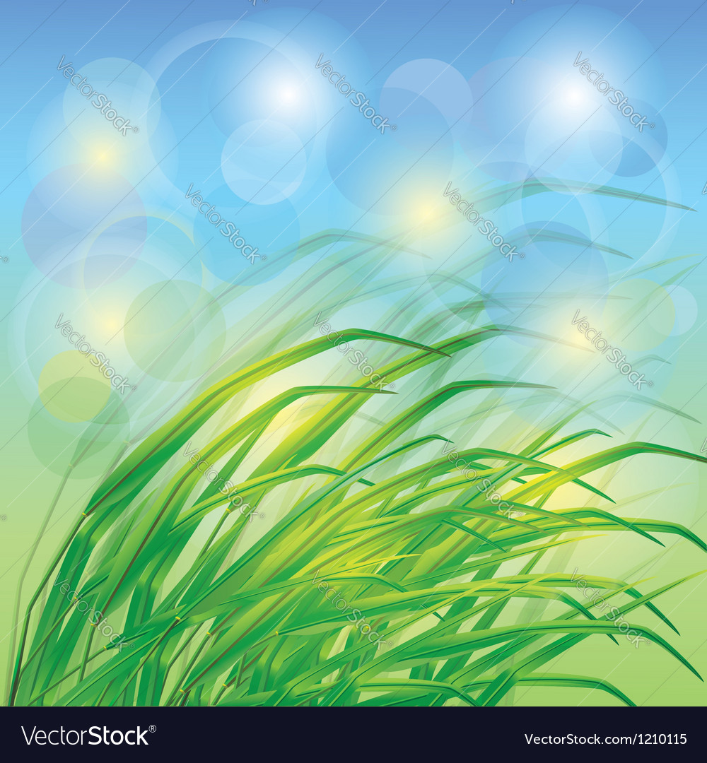 Spring background with fresh green grass vector | Price: 1 Credit (USD $1)