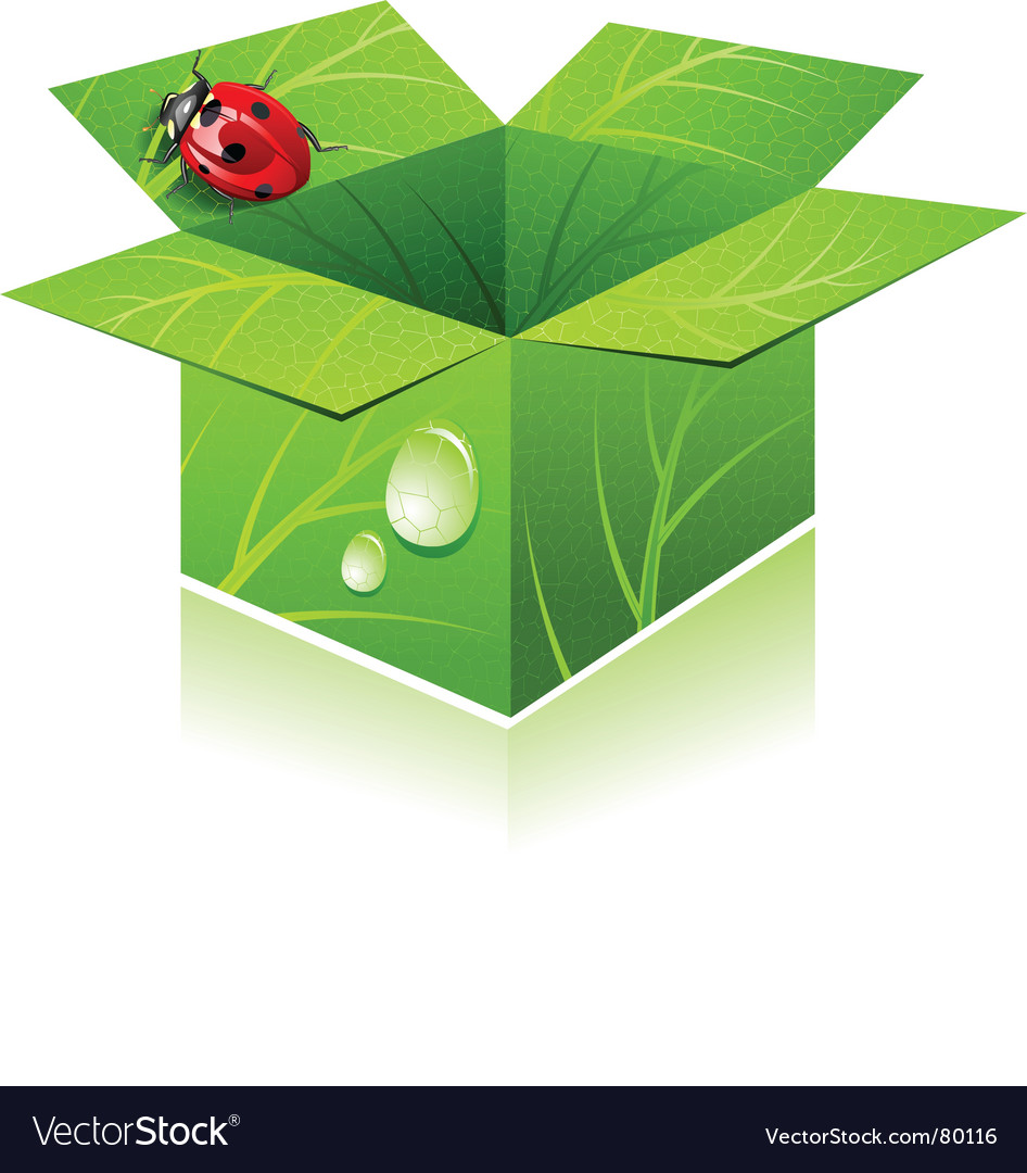 Lady bug vector | Price: 3 Credit (USD $3)