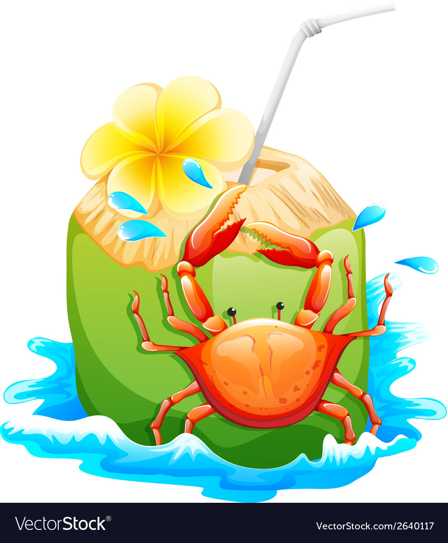 A refreshing summer drink vector | Price: 3 Credit (USD $3)