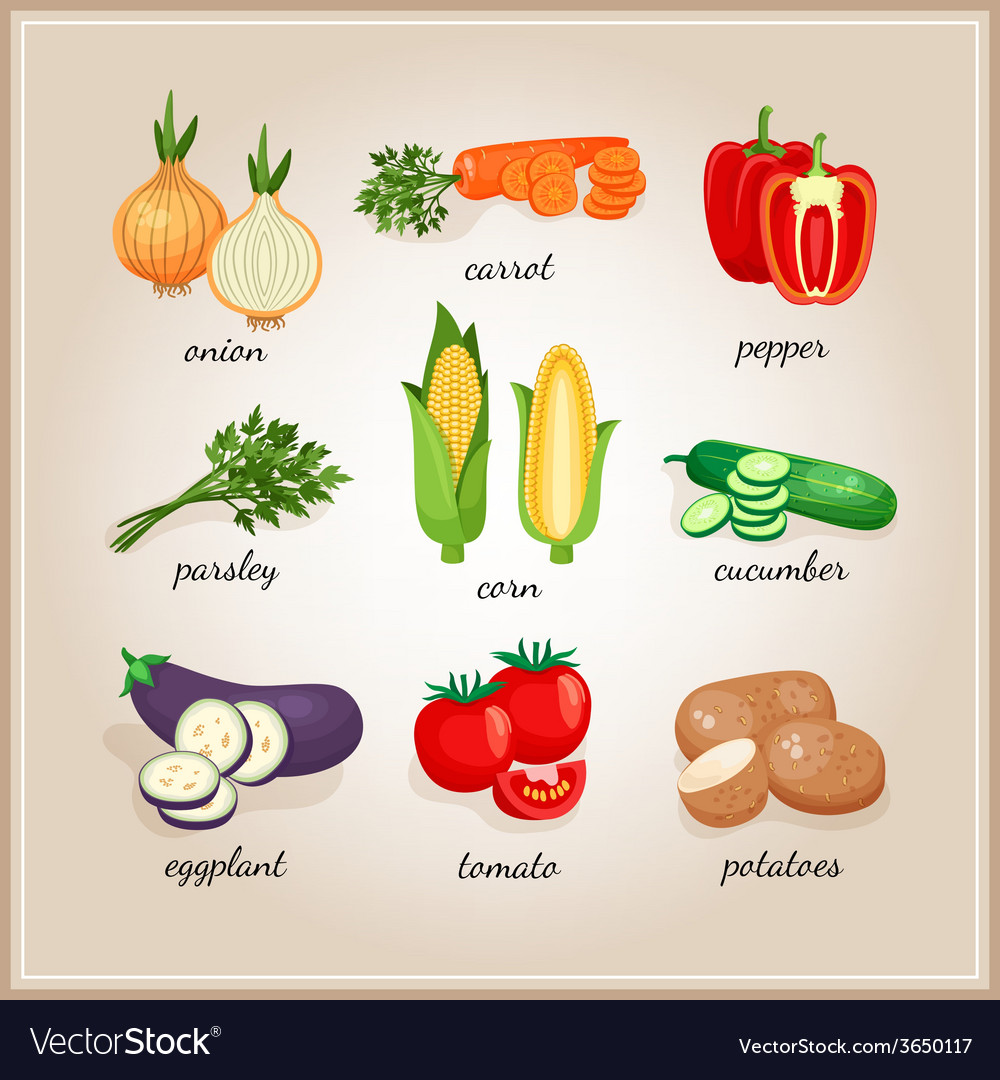 Vegetables ingredients vector | Price: 1 Credit (USD $1)