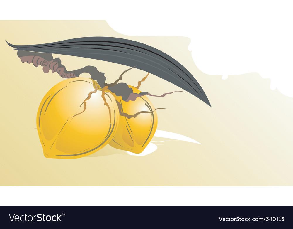 Coconuts vector | Price: 1 Credit (USD $1)