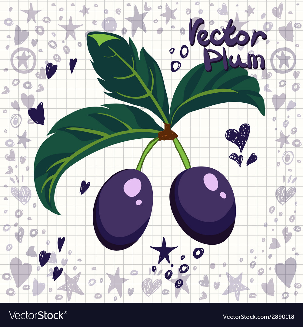 Fresh plums with leaves vector | Price: 1 Credit (USD $1)