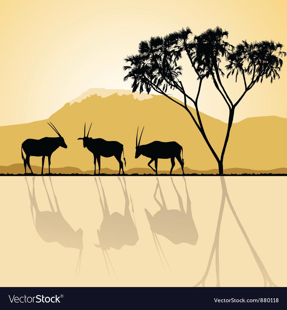 Kenya - african landscape vector   Price: 1 Credit (USD $1)