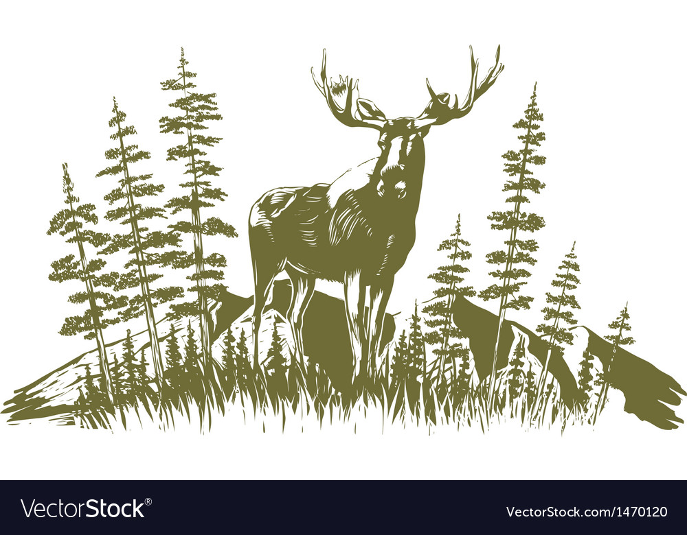 Woodcut moose design vector | Price: 1 Credit (USD $1)