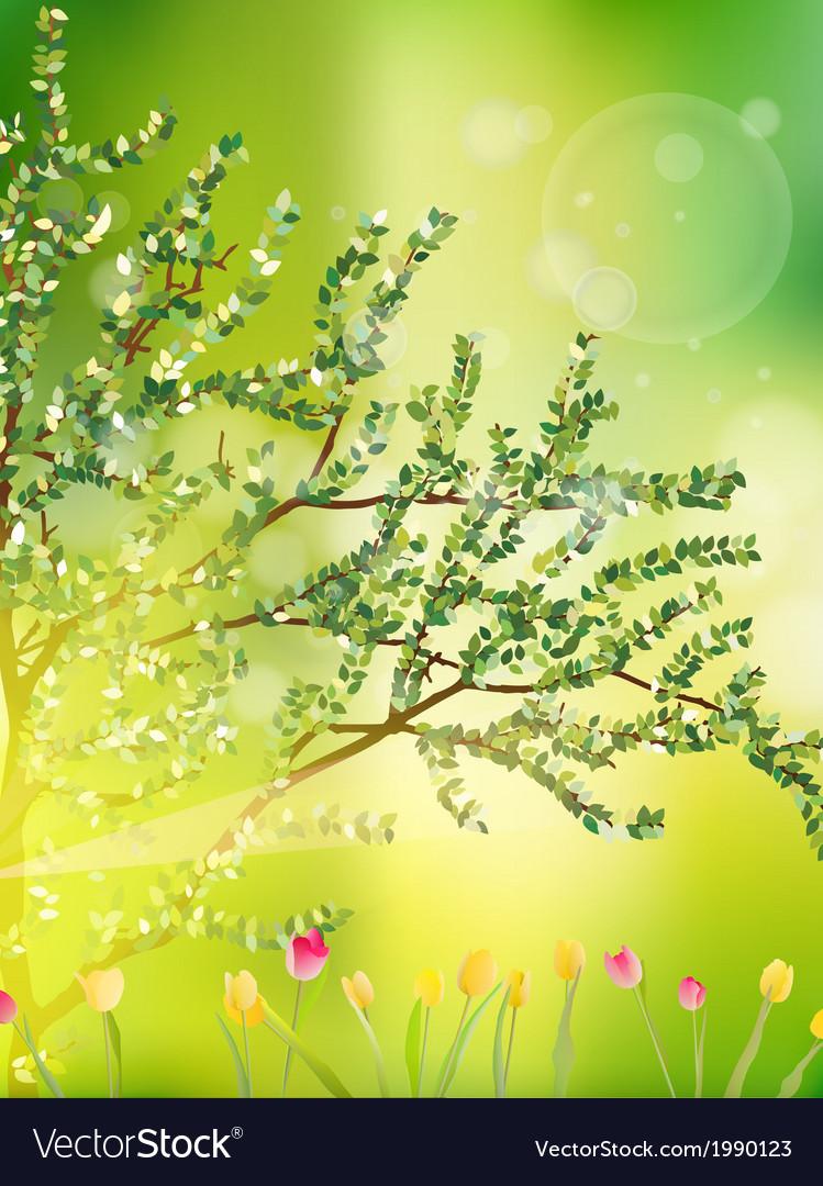 Tulip garden or field in spring eps 10 vector   Price: 1 Credit (USD $1)