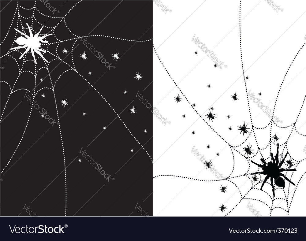Web and spiders vector | Price: 1 Credit (USD $1)