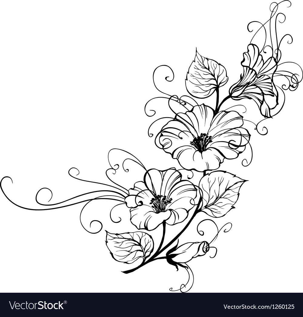 Bindweed flower vector | Price: 1 Credit (USD $1)