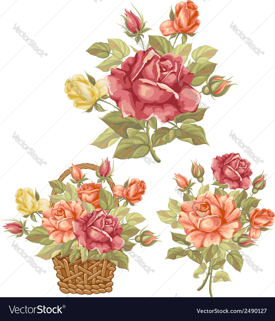 Rose set vector | Price: 1 Credit (USD $1)