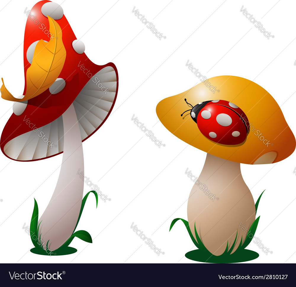 Two mushrooms vector | Price: 1 Credit (USD $1)