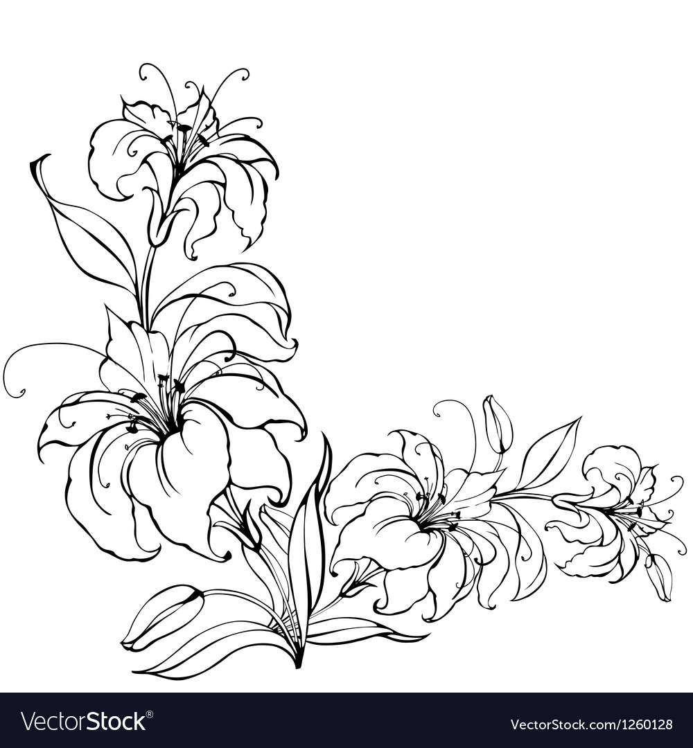 Lily flower vector | Price: 1 Credit (USD $1)
