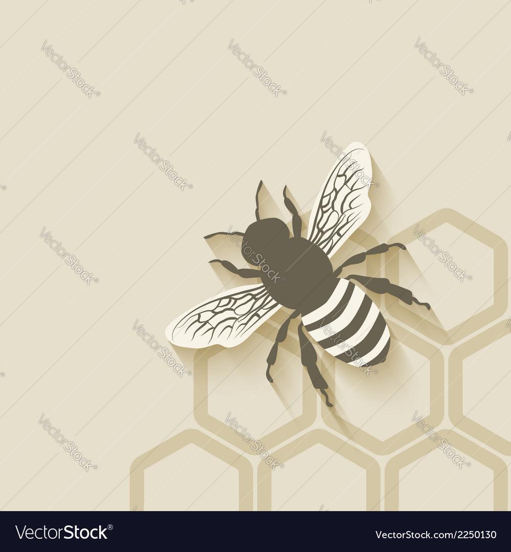 Bee honeycomb background vector | Price: 1 Credit (USD $1)