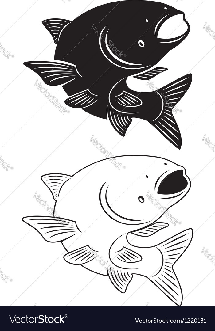 Asian carp vector | Price: 1 Credit (USD $1)