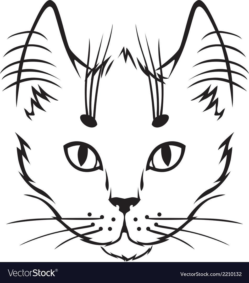 Cute kitten vector | Price: 1 Credit (USD $1)