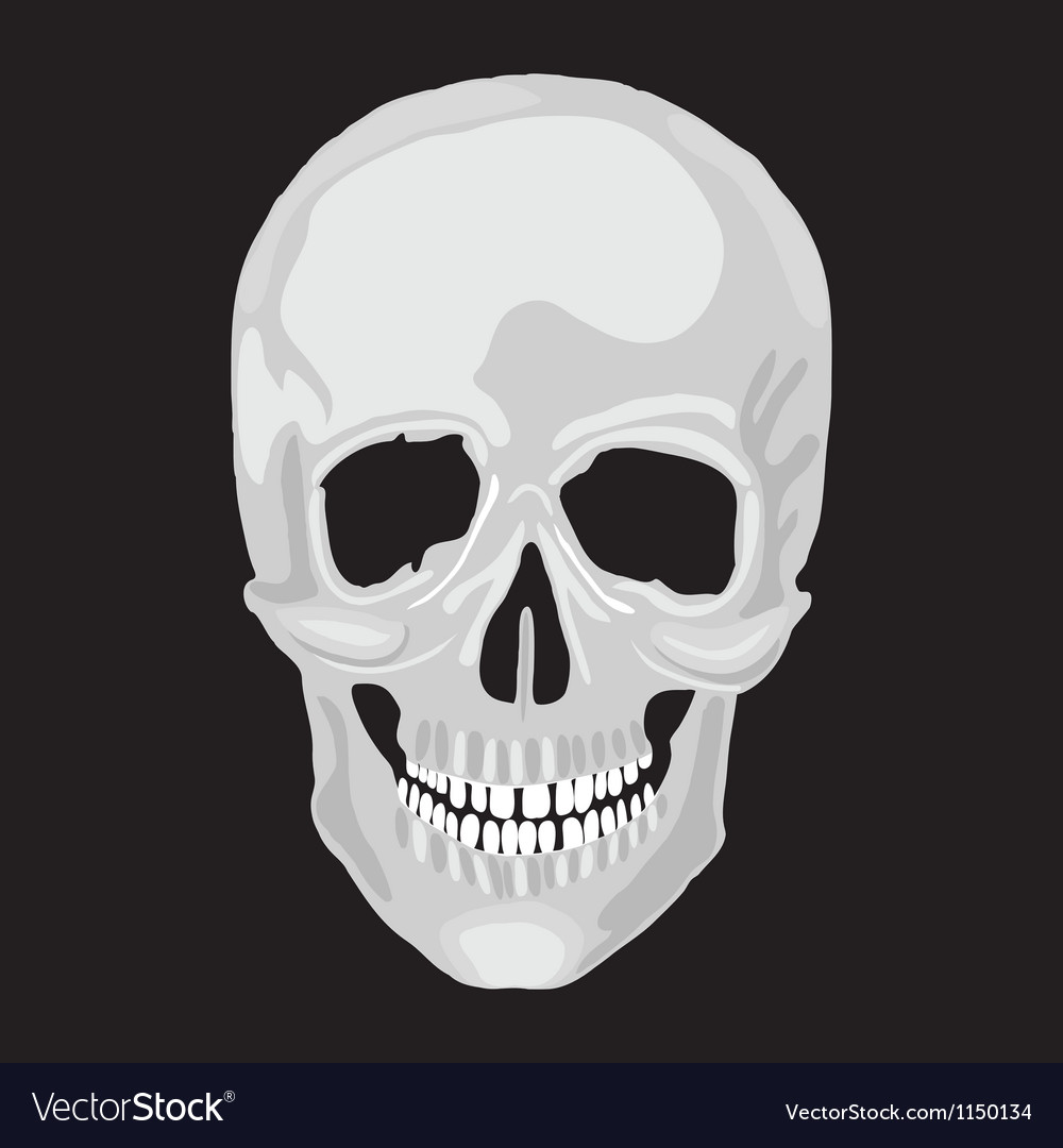 Scull human vector | Price: 1 Credit (USD $1)