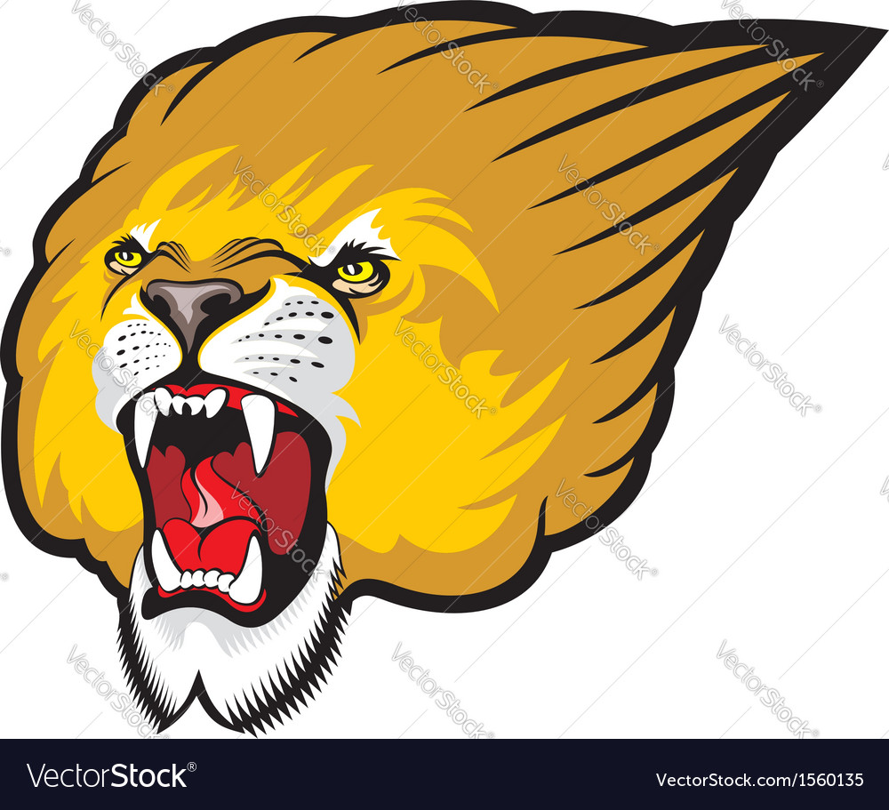 Lion head roaring vector | Price: 1 Credit (USD $1)