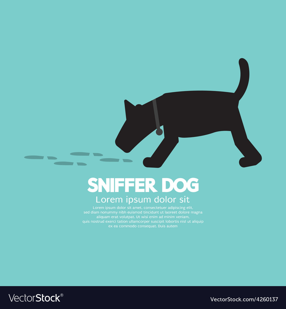 Sniffer dog smell footprint on ground vector | Price: 1 Credit (USD $1)