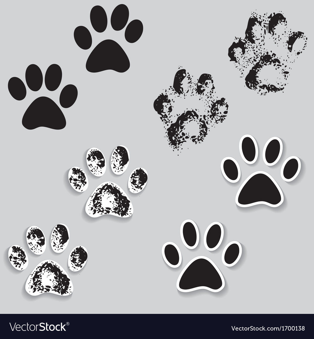Animal cat paw track feet print icons with shadow vector | Price: 1 Credit (USD $1)