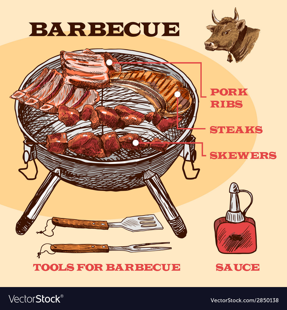 Sketch meat bbq infographic vector | Price: 1 Credit (USD $1)