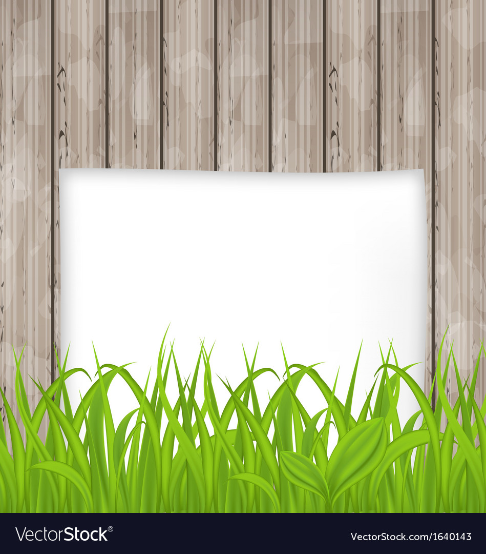 Green grass and paper sheet on wooden texture vector | Price: 1 Credit (USD $1)