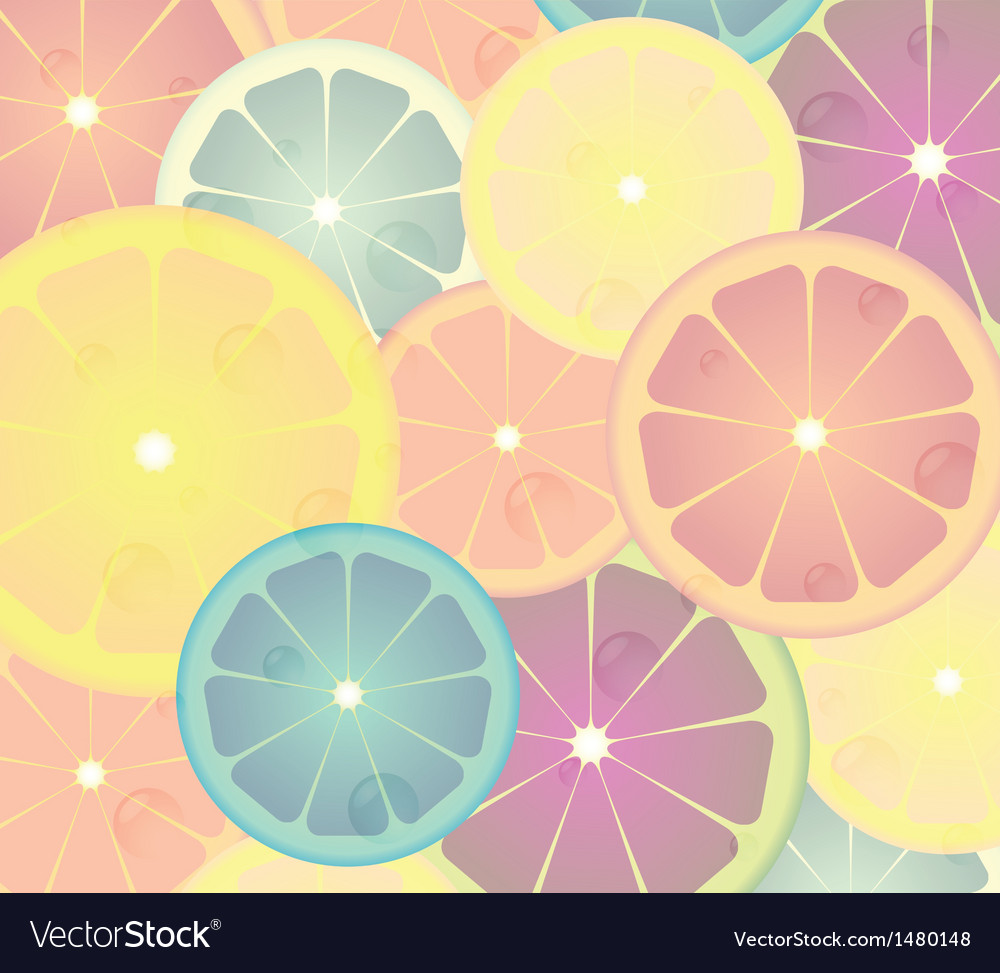 Lime cicles vector | Price: 1 Credit (USD $1)