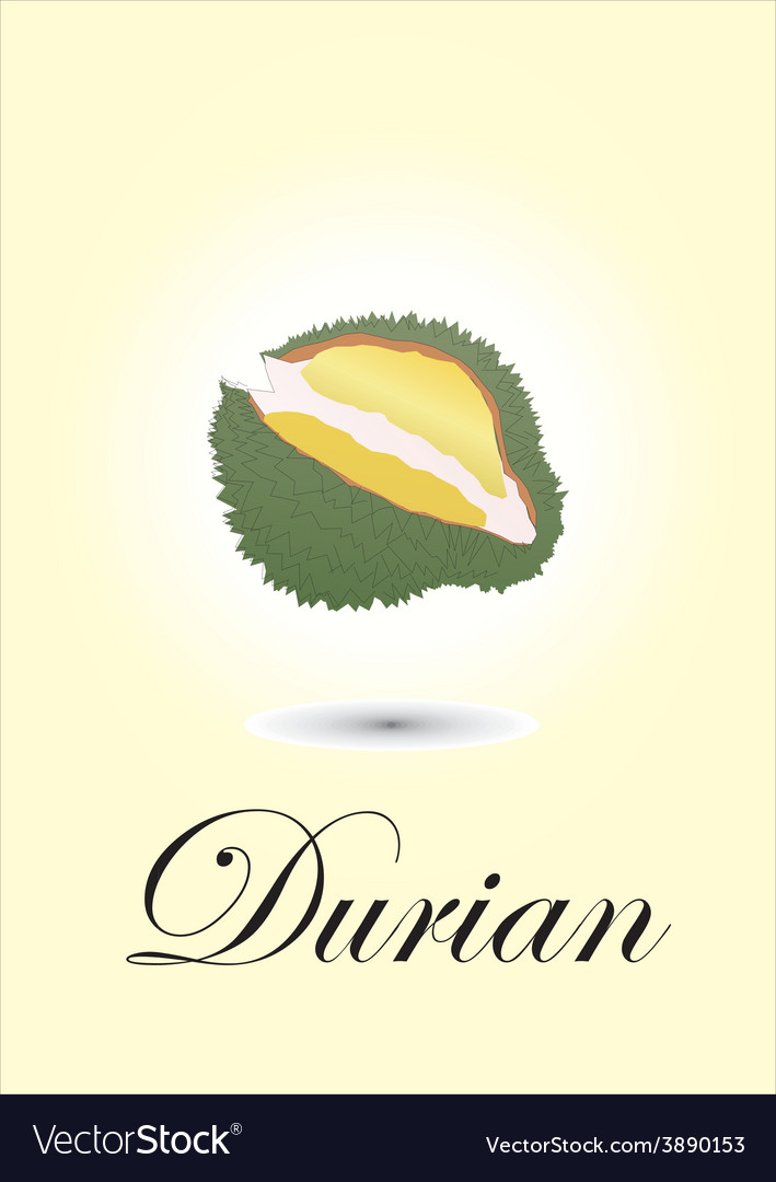 Durian vector | Price: 1 Credit (USD $1)