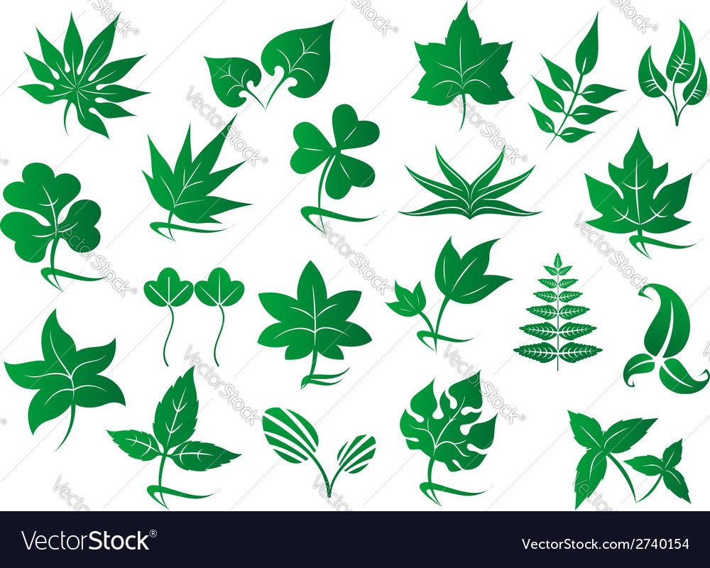 Green leaves and plants set vector | Price: 1 Credit (USD $1)