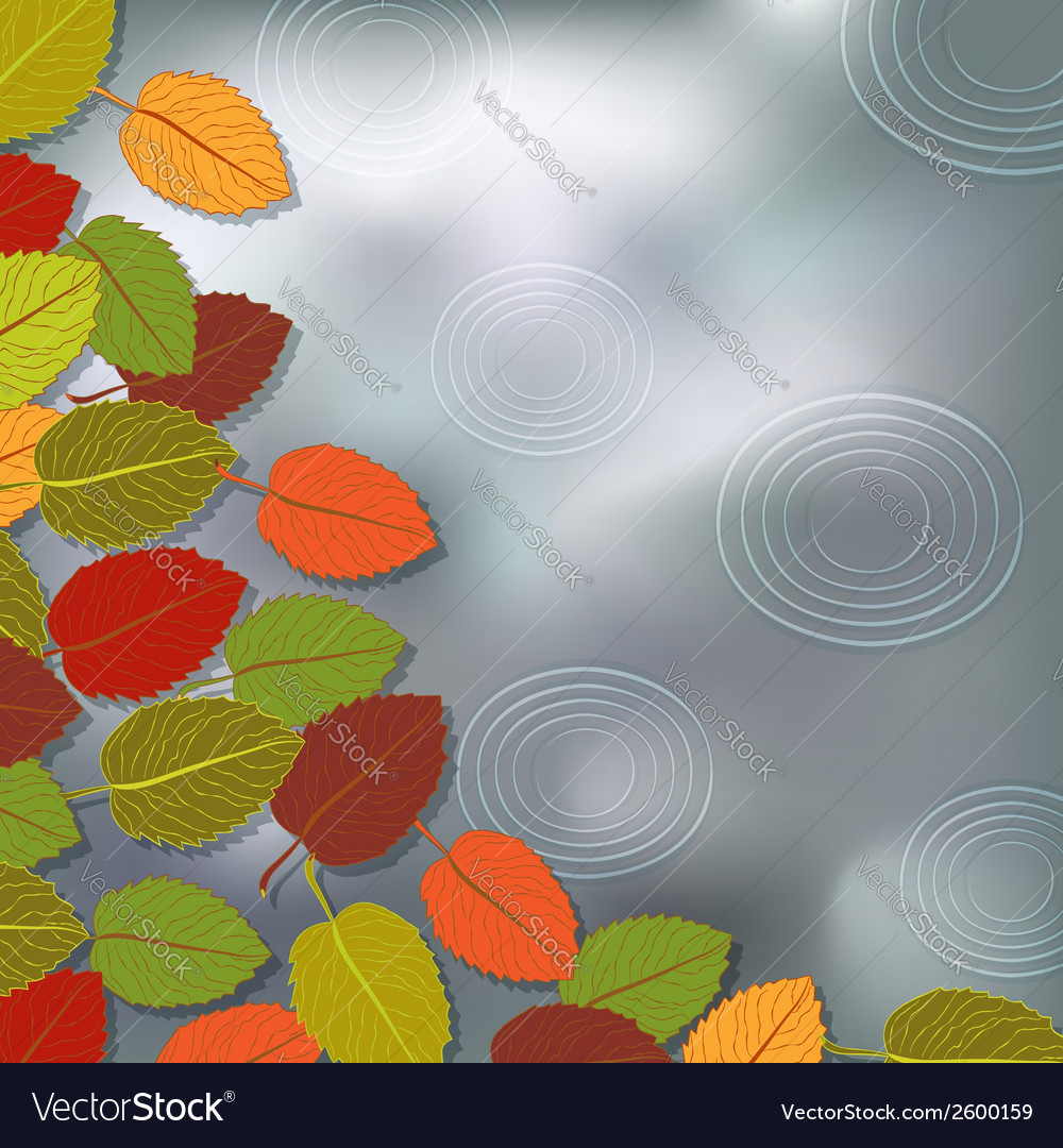 Autumn foliage rain background vector | Price: 1 Credit (USD $1)