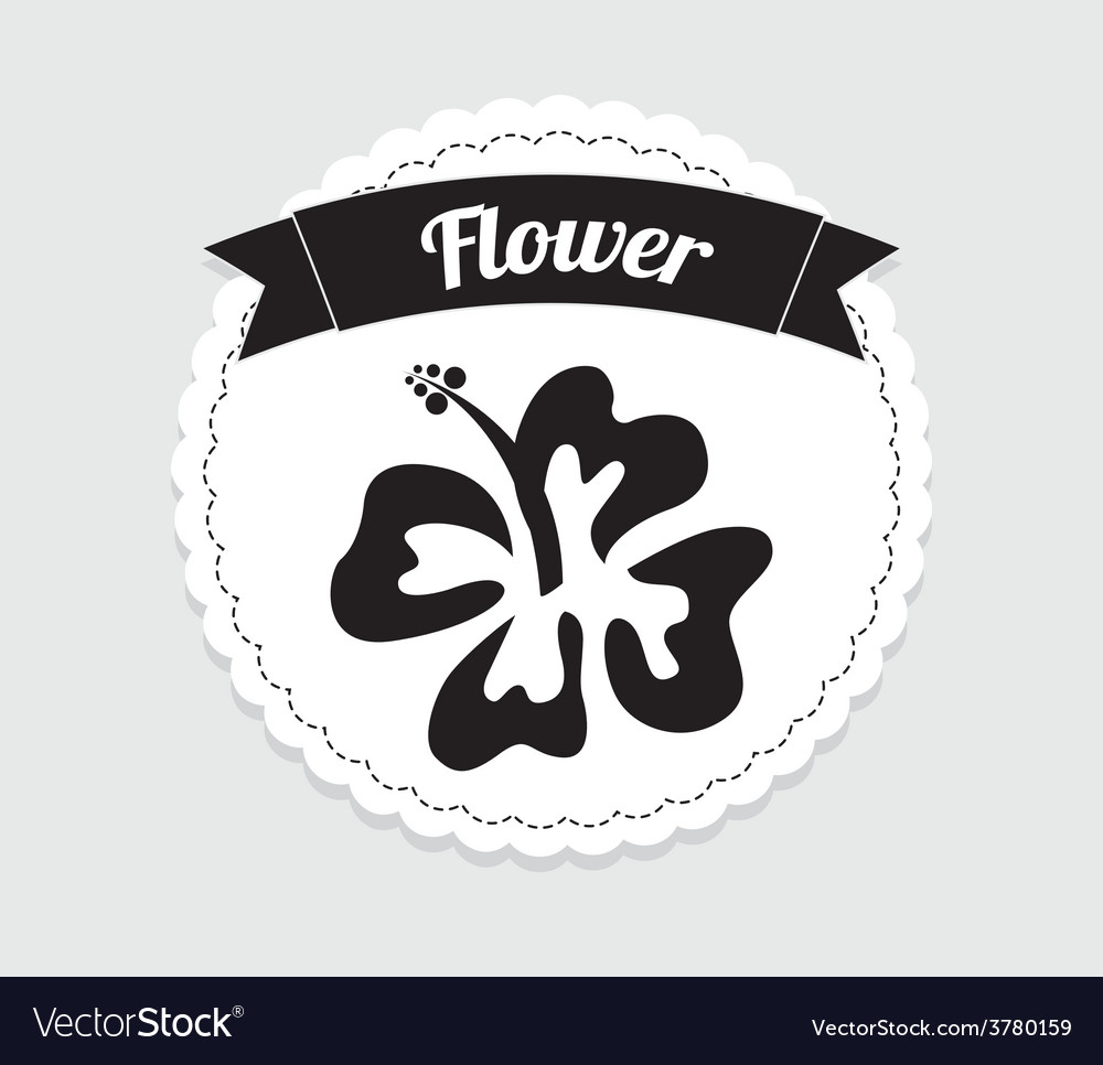 Hawaii flower vector | Price: 1 Credit (USD $1)