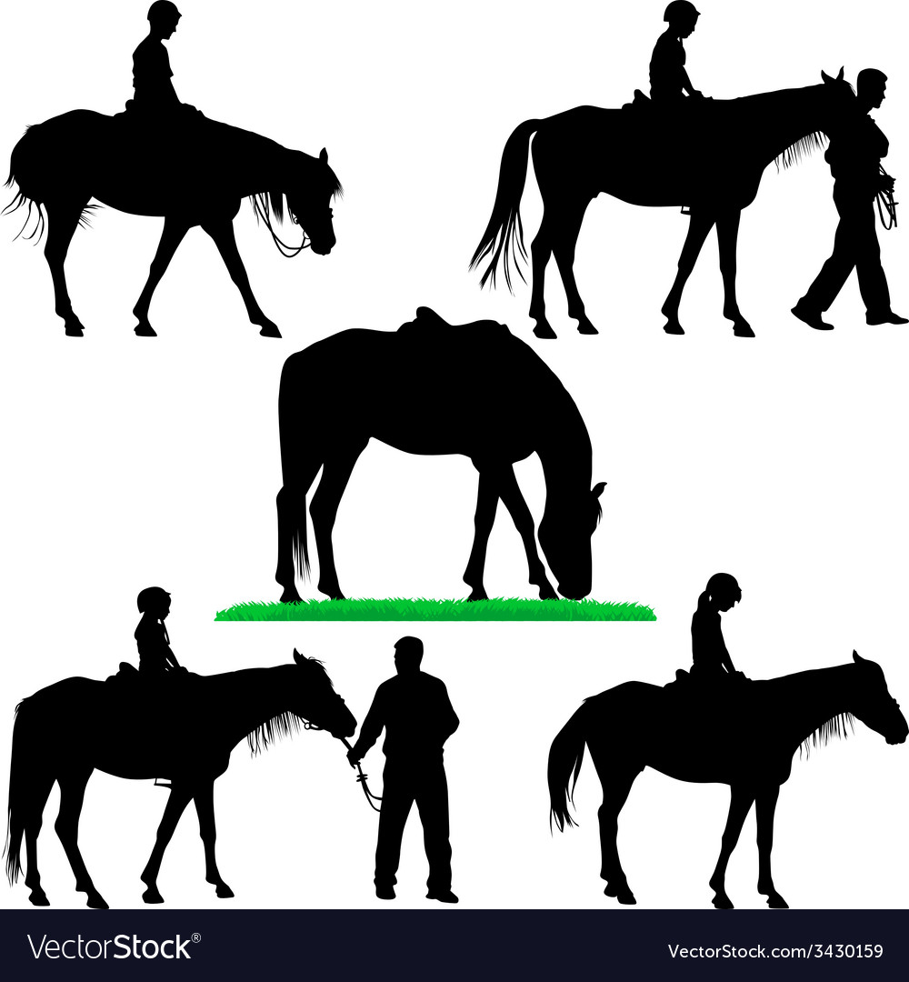 Horse riding school vector | Price: 1 Credit (USD $1)