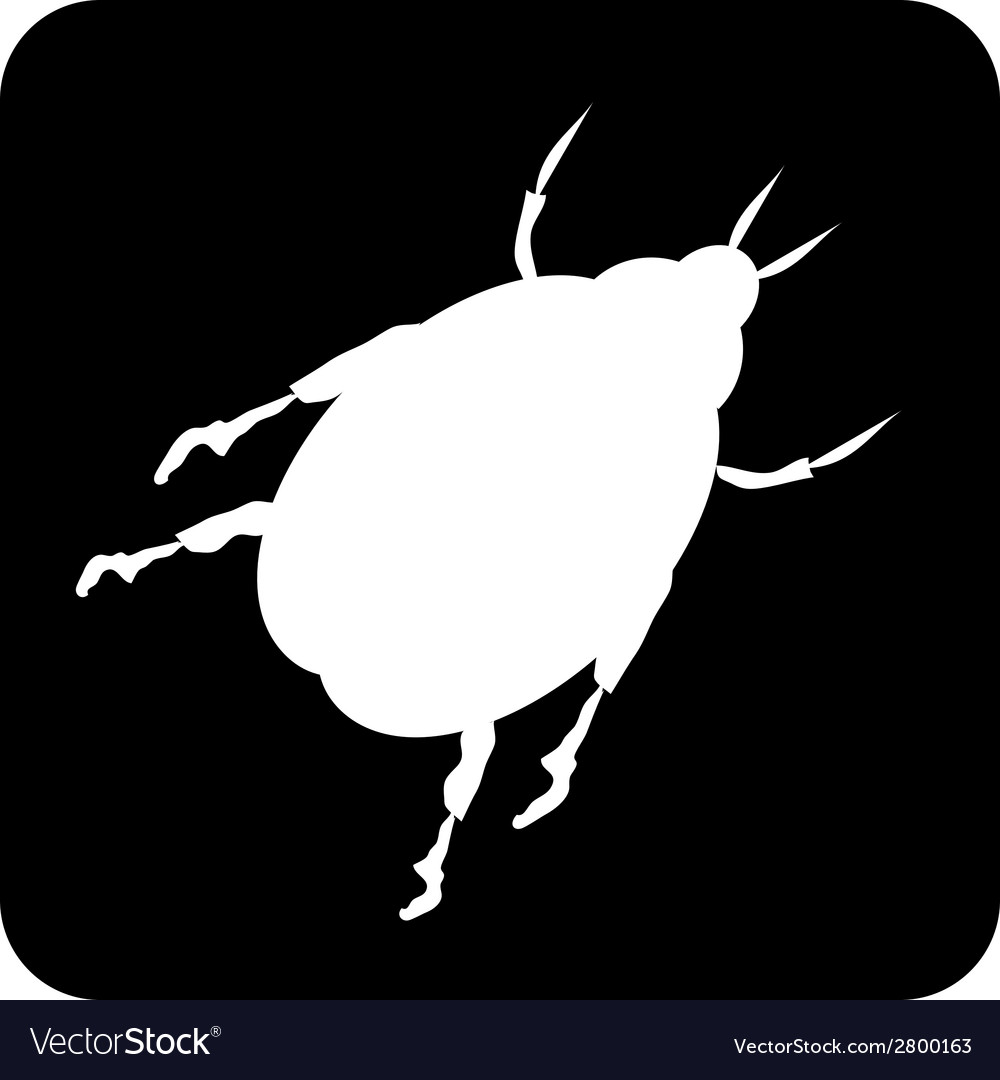 Beetle button vector | Price: 1 Credit (USD $1)
