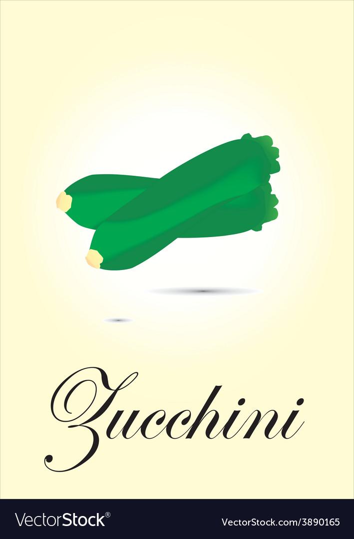 Zucchini vector | Price: 1 Credit (USD $1)