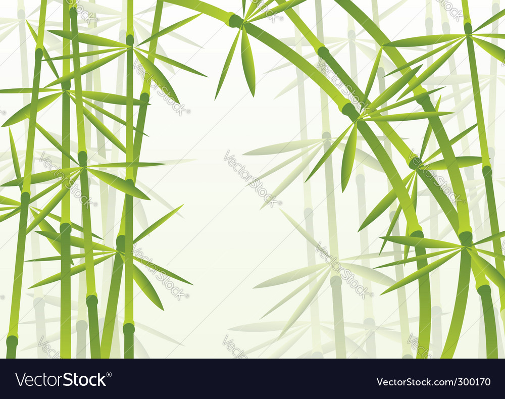 Bamboo forest vector   Price: 1 Credit (USD $1)