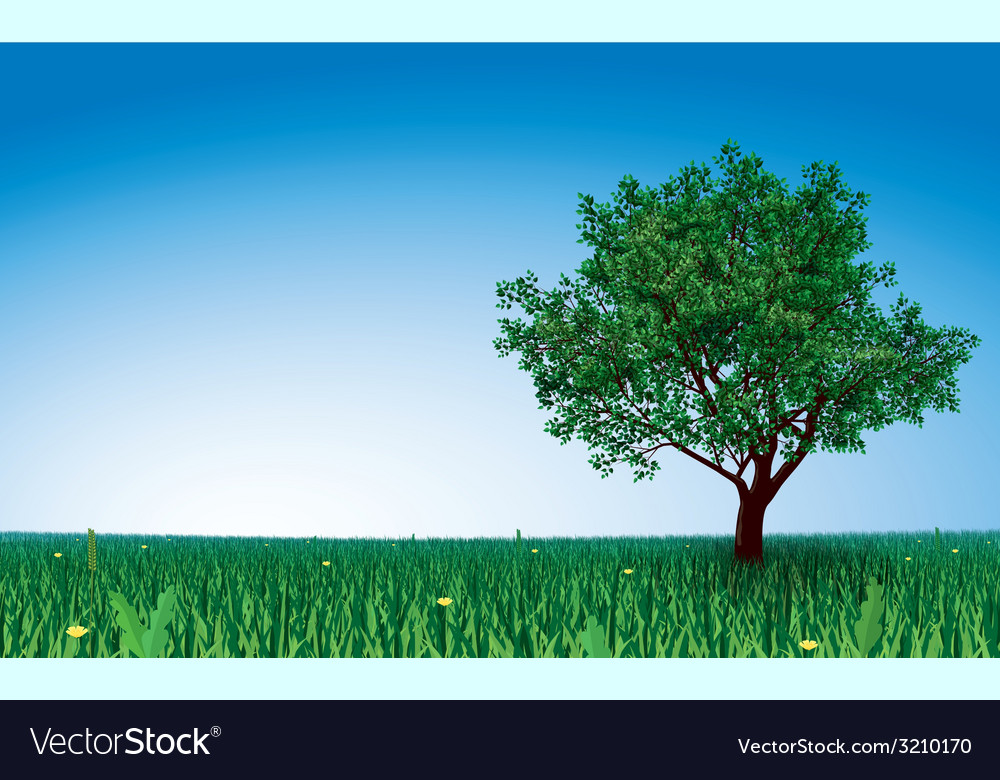 Tree on green field vector | Price: 1 Credit (USD $1)