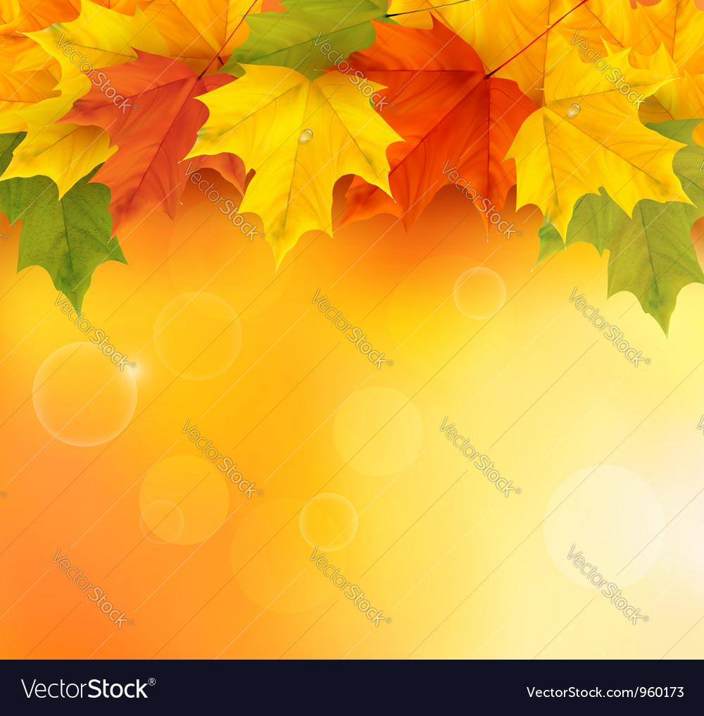 Autumn background with autumn leaves vector