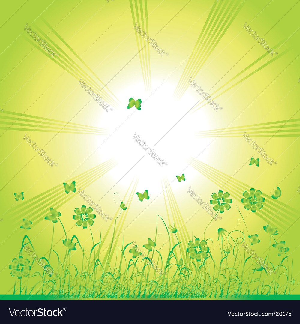 Summer nature butterfly vector | Price: 1 Credit (USD $1)