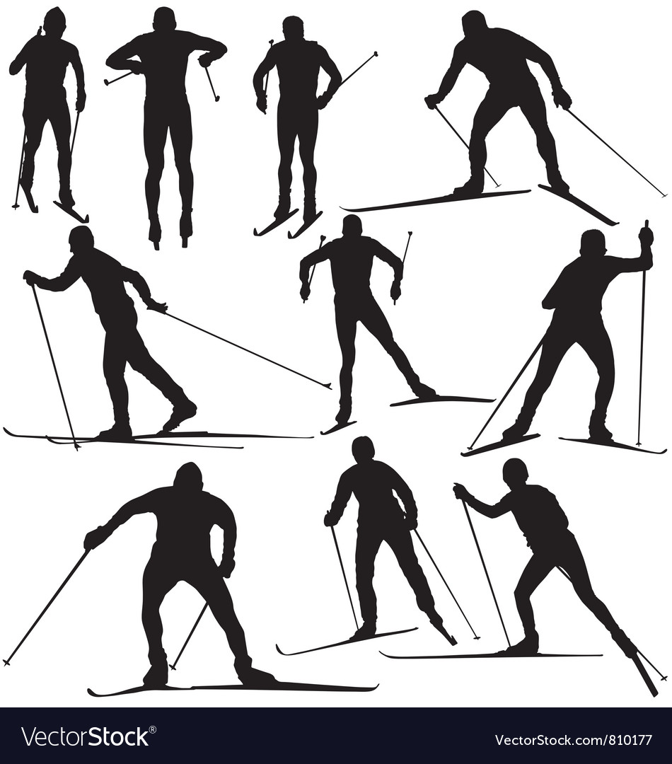 Cross country skier silhouettes vector | Price: 1 Credit (USD $1)