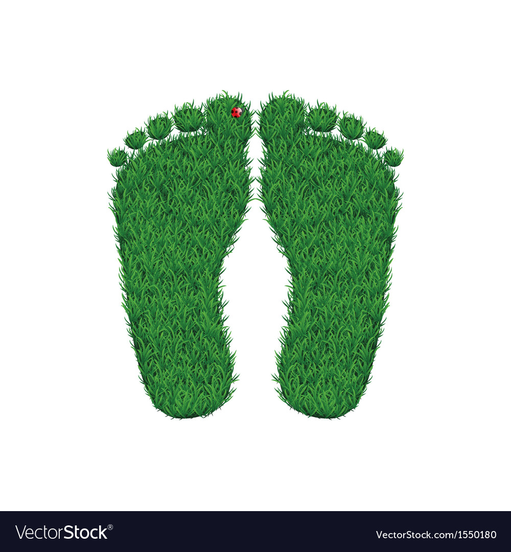 Grass footsteps and ladybug vector | Price: 1 Credit (USD $1)