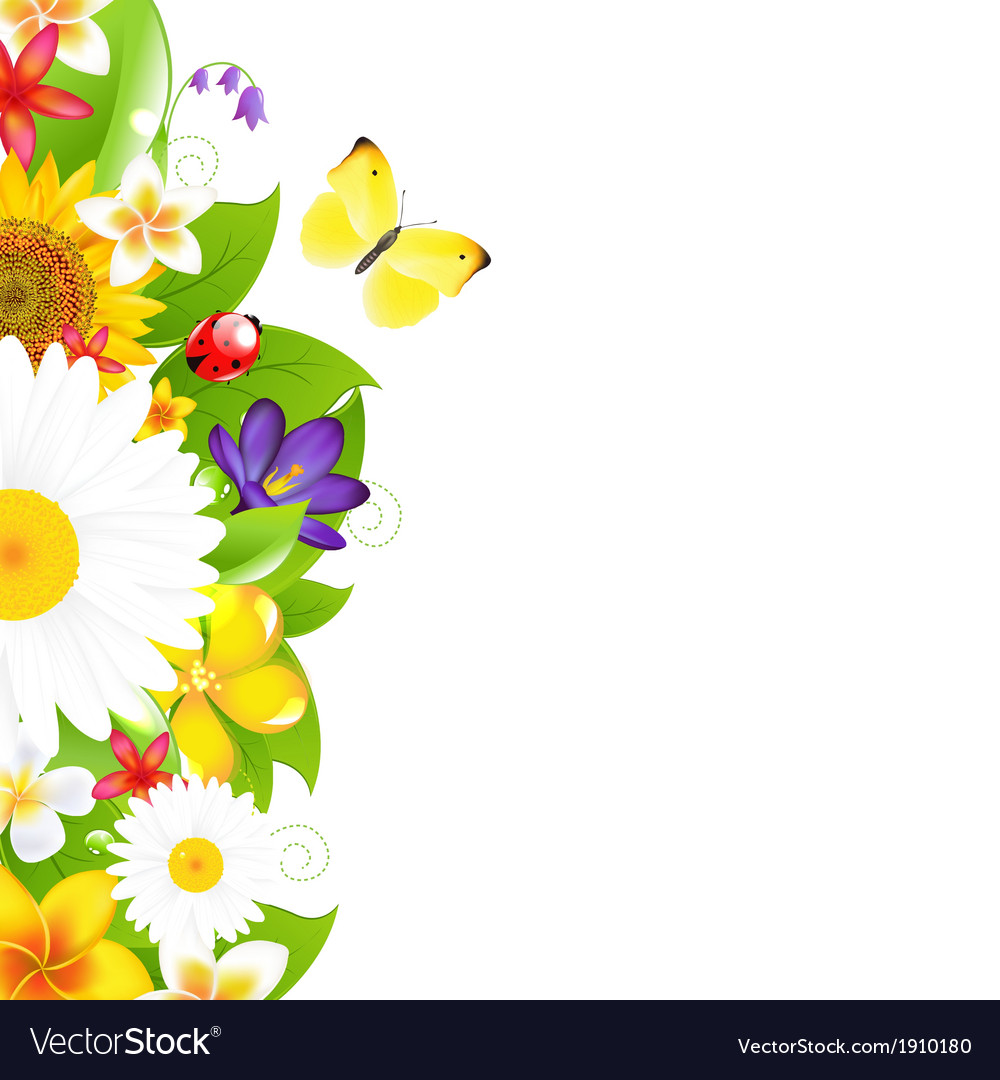 Summer flowers and leaf border vector   Price: 1 Credit (USD $1)