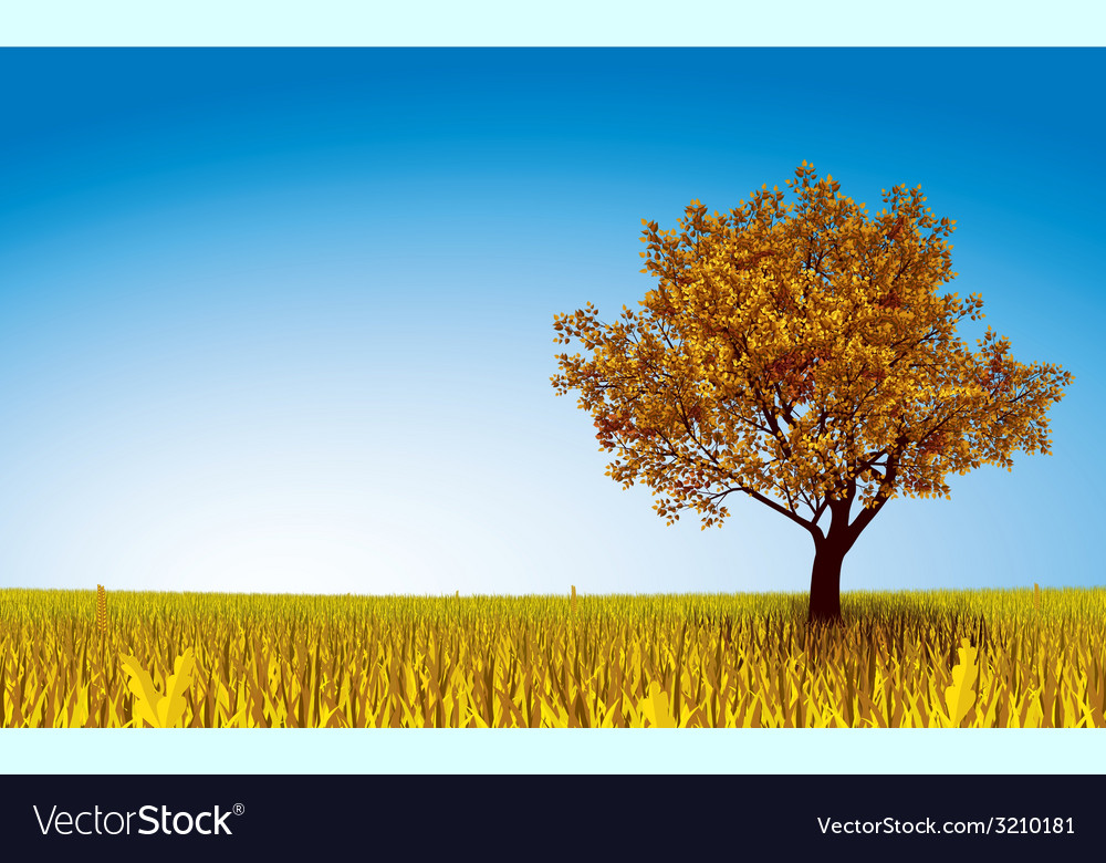 Autumn tree on field vector | Price: 1 Credit (USD $1)