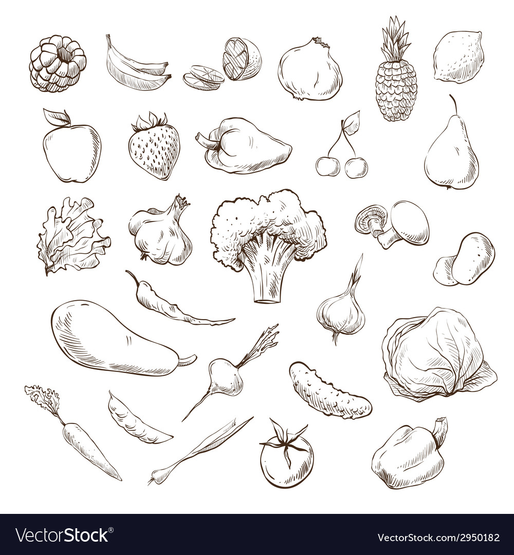 Vegetables and fruits drawing vector | Price: 1 Credit (USD $1)