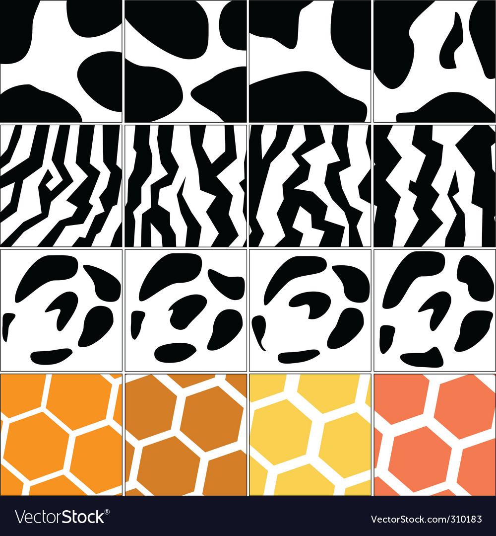Animal skin vector | Price: 1 Credit (USD $1)